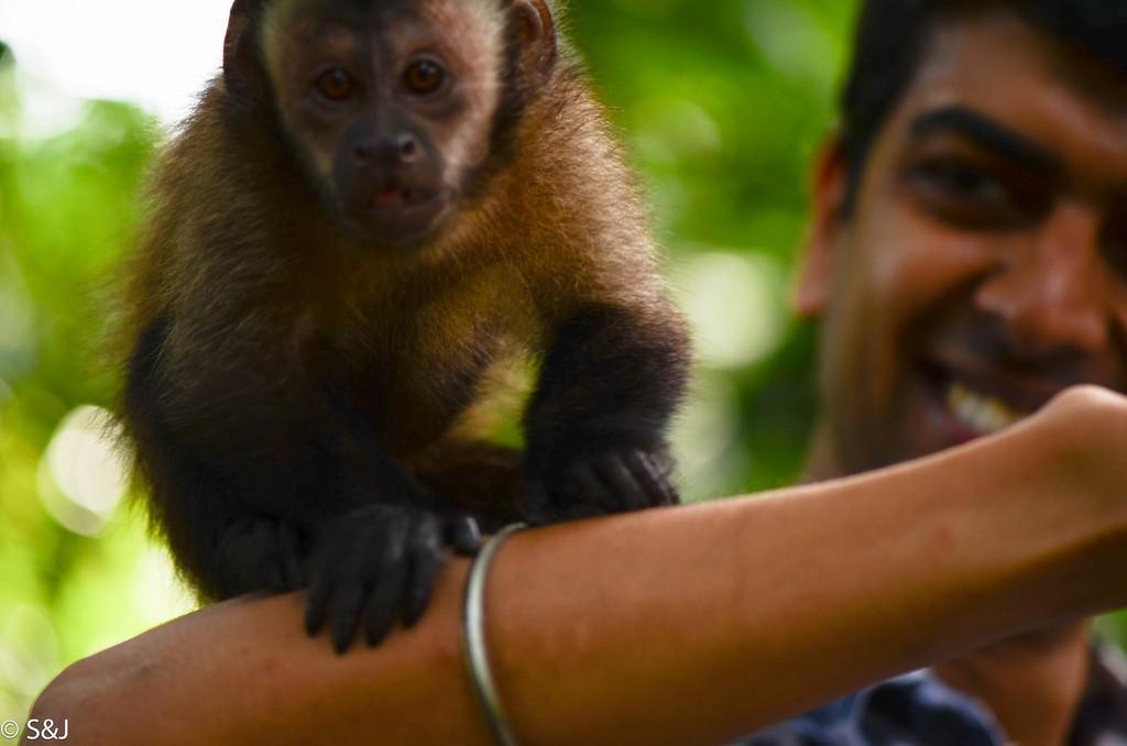 6270598907 0019ecd0ef b amazonas colombia 1024x678 - Top de los mejores lugares y cosas que hacer en el Amazonas Colombiano