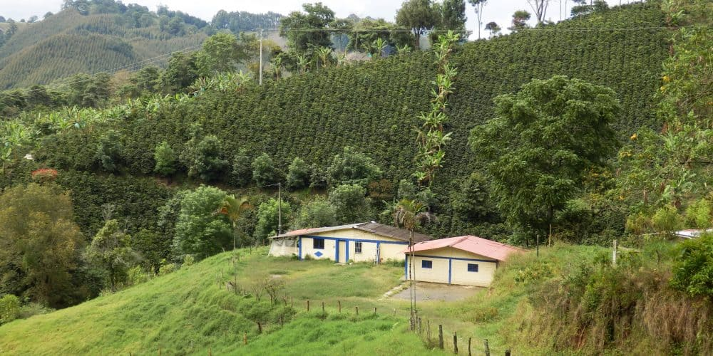 Canva Finca In The Colombian Coffee Region Near Salento In Quindio Departement Min 1 1000x500