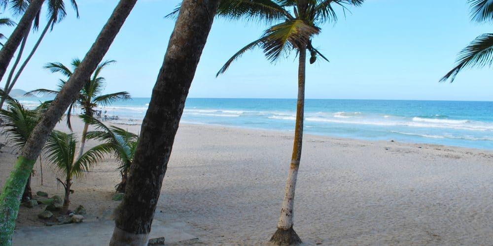 Isla Margarita Playa El Agua 3 1000x500 - Hesperia Playa El Agua: Isla Margarita 7 Noches con Vuelos Directos · Oferta Año Nuevo y Reyes