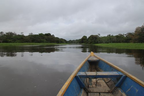 Canva Boat In The Amazon 1 500x333