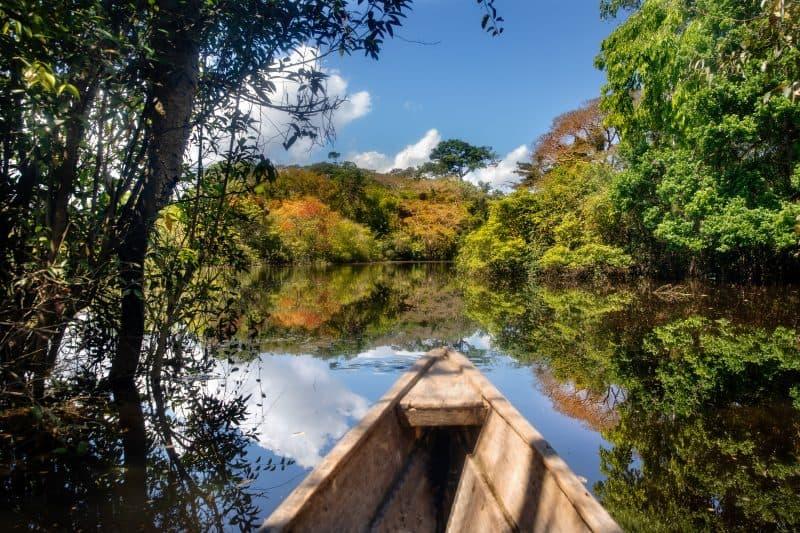 Canva Flooded Forest In Leticia Colombia. - Amazonas Colombia: Turismo De Naturaleza Y Aventura