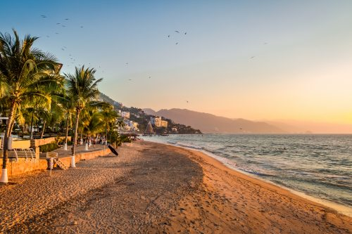 Canva Puerto Vallarta Sunset And Palms Puerto Vallarta Jalisco Mexico 500x333