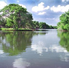 284Px La Restinga - Monumentos Naturales En Isla Margarita.