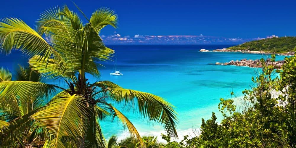 Canva tropical melody 1000x500 - Bahamas, Vuelo Incluido- 4 Noches 5 Días