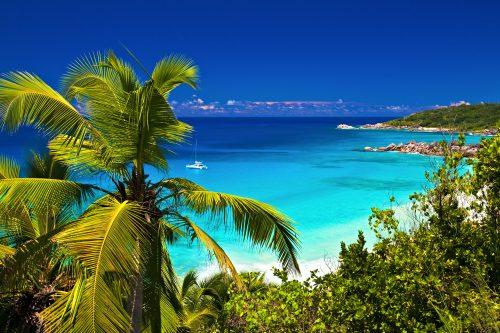 Canva tropical melody 500x333 - Bahamas, Vuelo Incluido- 4 Noches 5 Días