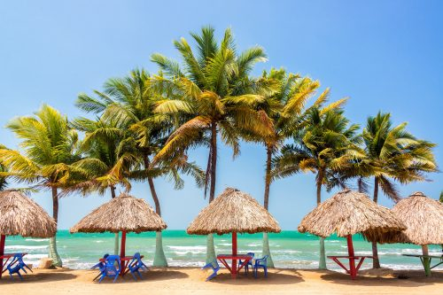 palm trees and sea PFN6AE4 1 min 500x333 - Oferta Santa Marta · con Vuelo directo