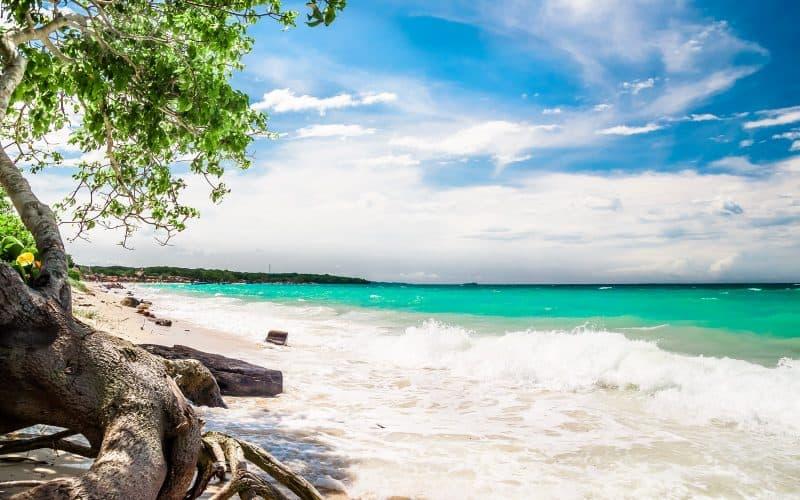 Playa Blanca Baru Cartagena - Cartagena: Planes O Paquetes 2021