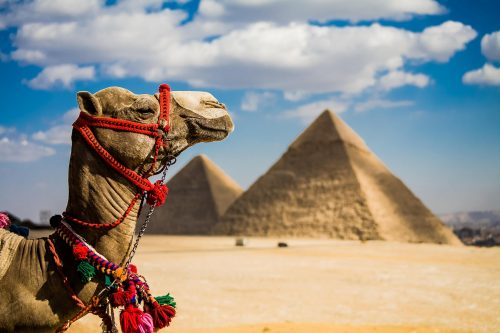 Egipto - Turquía