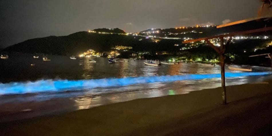Biolumini Acapulco - El Increíble Fenómeno En Playas De Acapulco En Plena Cuarentena