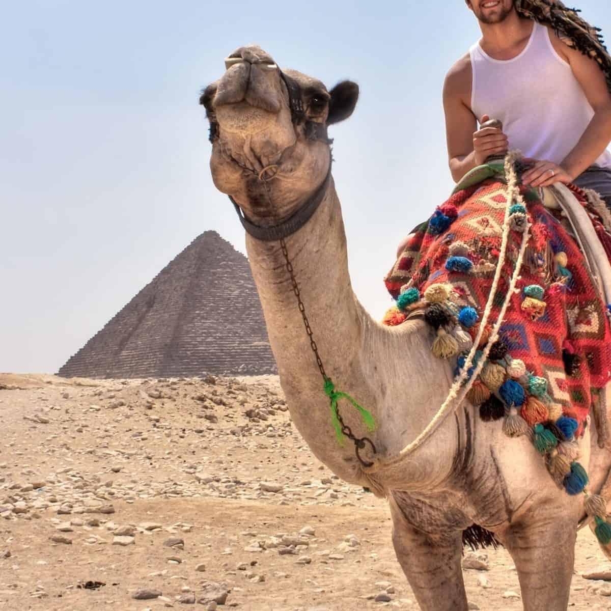 Hombre Egipto Camello Planesturisticos.com - Turquía Y Egipto 17 Días 15 Noches   Vuelos Desde Bogotá   Hasta Diciembre 2021